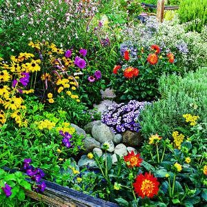 summer-flowers[1]